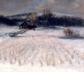 cornfield-in-winter35